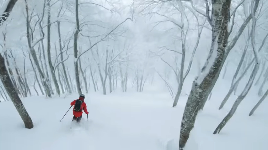 Not Your Average Japow Edit